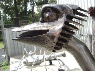 Emu_Head_with_head_cooling_gear.jpg